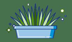 macchie di erba
